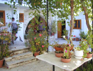 Quaint old agrotourism property in Cyprus for holiday rentals.- Cyprus villages -