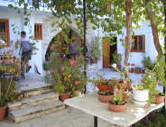 Quaint old agrotourism property in Cyprus for holiday rentals.