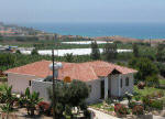 Bananorama villa in Paphos Cyprus for holiday rentals - a bargain holiday.